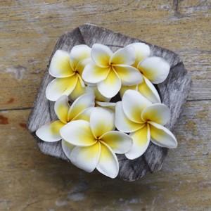 fleurs huiles Copie