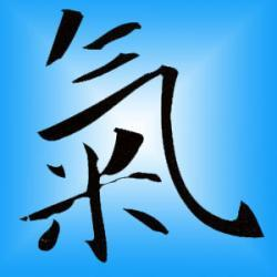 Feng Shui : Mode d'Emploi