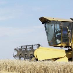 L'Agriculture Bio : Un Espoir Pour l'Avenir